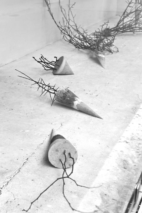 Transit, 2016, terre, plâtre, ciment, végétaux